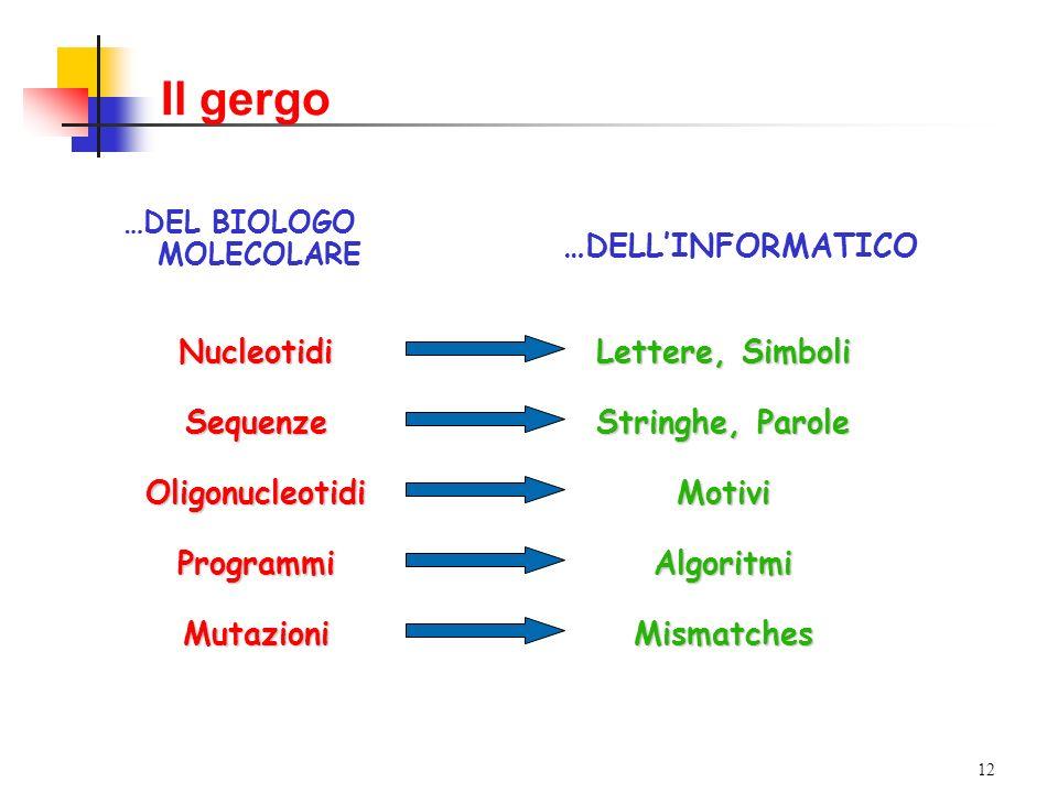 12 Il gergo …DEL BIOLOGO MOLECOLARE Nucleotidi Lettere, Simboli …DELLINFORMATICO Sequenze Stringhe, Parole OligonucleotidiMotivi ProgrammiAlgoritmi MutazioniMismatches