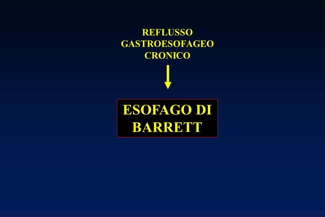 REFLUSSO GASTROESOFAGEO CRONICO ESOFAGO DI BARRETT