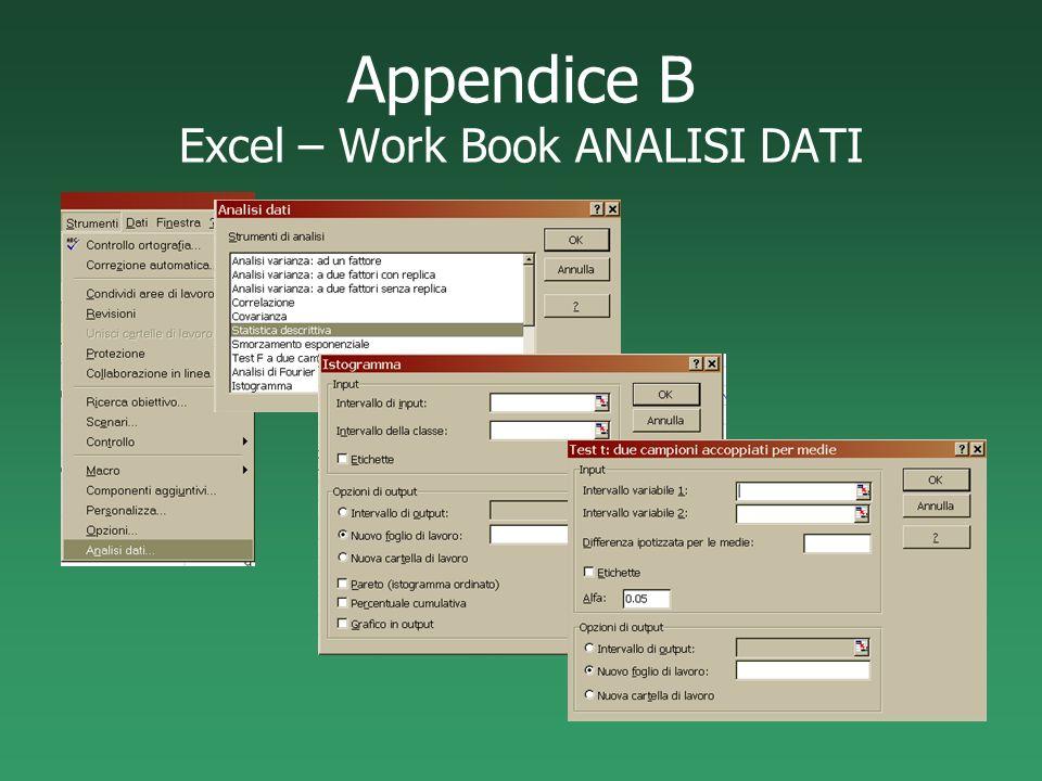 Appendice B Excel – Work Book ANALISI DATI