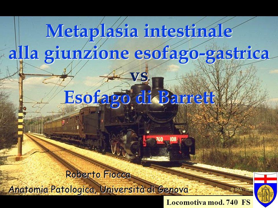 Locomotiva mod. 740 FS Metaplasia intestinale alla giunzione esofago-gastrica vs Esofago di Barrett Roberto Fiocca Anatomia Patologica, Università di