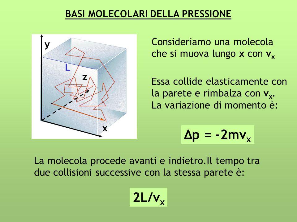 BASI MOLECOLARI DELLA PRESSIONE Consideriamo una molecola che si muova lungo x con v x Essa collide elasticamente con la parete e rimbalza con v x. La