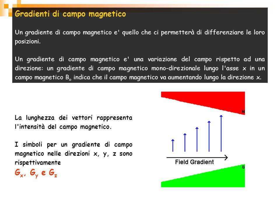 Gradienti di campo magnetico Un gradiente di campo magnetico e' quello che ci permetterà di differenziare le loro posizioni. Un gradiente di campo mag
