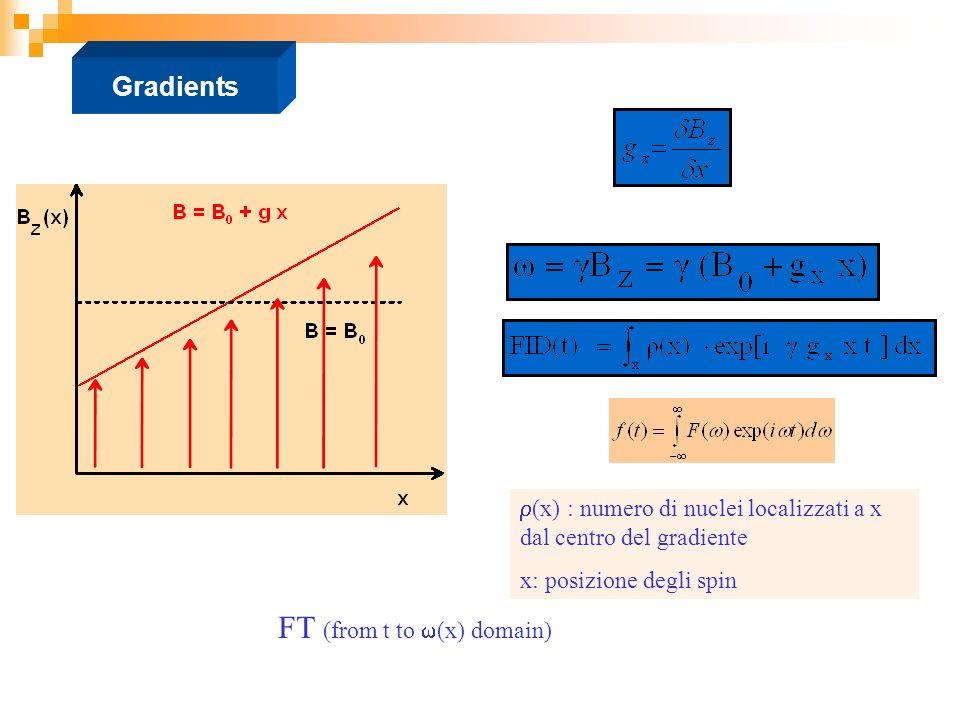 Gradients FT (from t to (x) domain) (x) : numero di nuclei localizzati a x dal centro del gradiente x: posizione degli spin