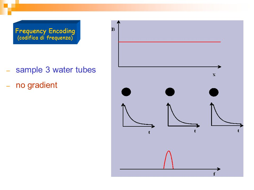 – sample 3 water tubes – no gradient Frequency Encoding (codifica di frequenza)