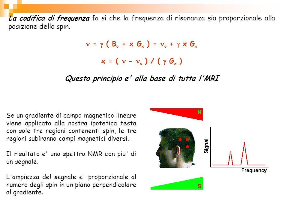 La codifica di frequenza fa sì che la frequenza di risonanza sia proporzionale alla posizione dello spin. = ( B o + x G x ) = o + x G x x = ( - o ) /
