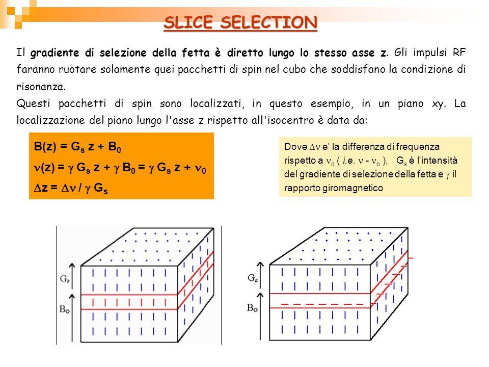 SLICE SELECTION Il gradiente di selezione della fetta è diretto lungo lo stesso asse z. Gli impulsi RF faranno ruotare solamente quei pacchetti di spi