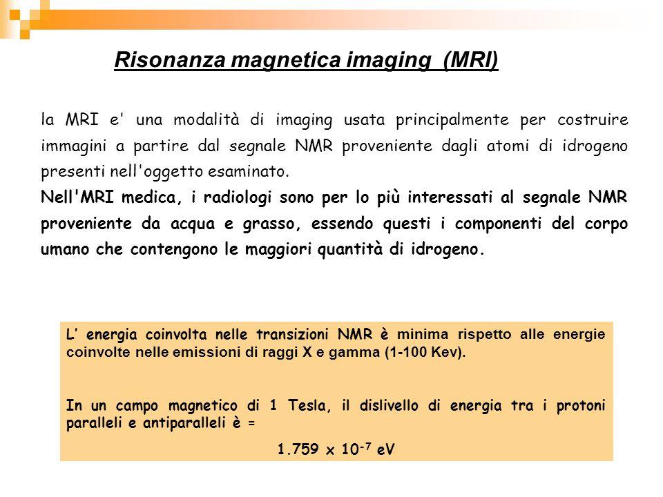 Risonanza magnetica imaging (MRI) L energia coinvolta nelle transizioni NMR è minima rispetto alle energie coinvolte nelle emissioni di raggi X e gamm