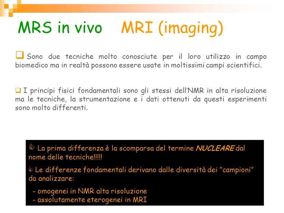 MRS in vivo e MRI (imaging) Sono due tecniche molto conosciute per il loro utilizzo in campo biomedico ma in realtà possono essere usate in moltissimi