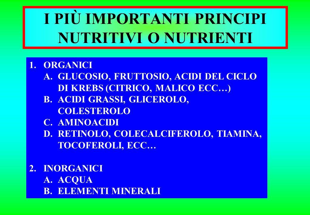 1.ORGANICI A.GLUCIDI A1. GLUCIDI FIBROSI O STRUTTURALI (SOLO VEGETALI) A2. GLUCIDI NON FIBROSI O NON STRUTT. B.LIPIDI C.PROTIDI d.vitamine 2.INORGANIC