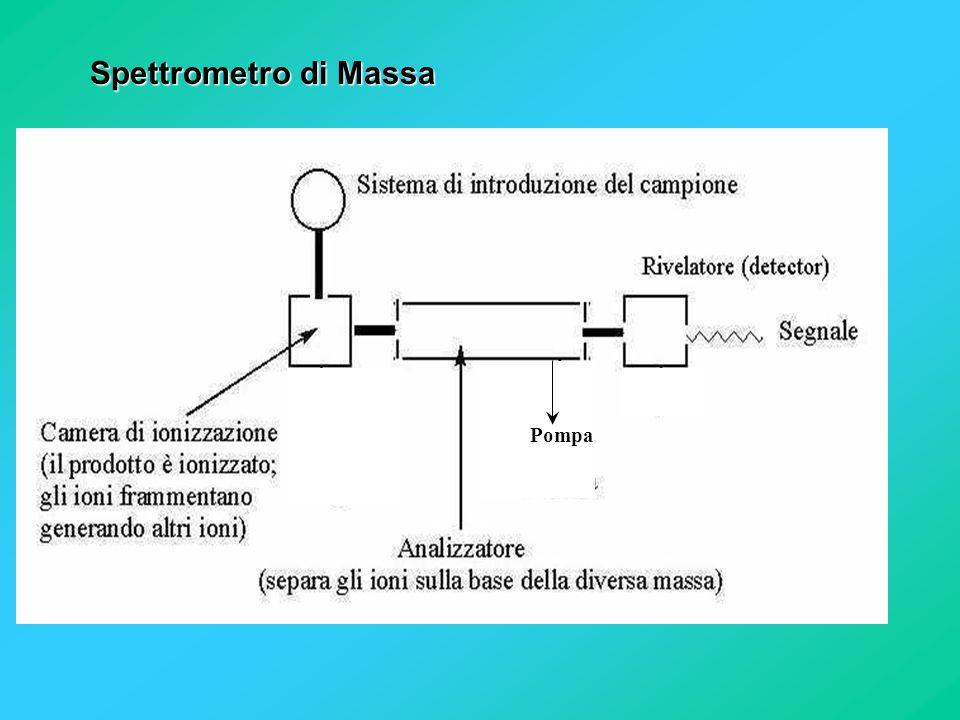 Spettrometro di Massa Pompa