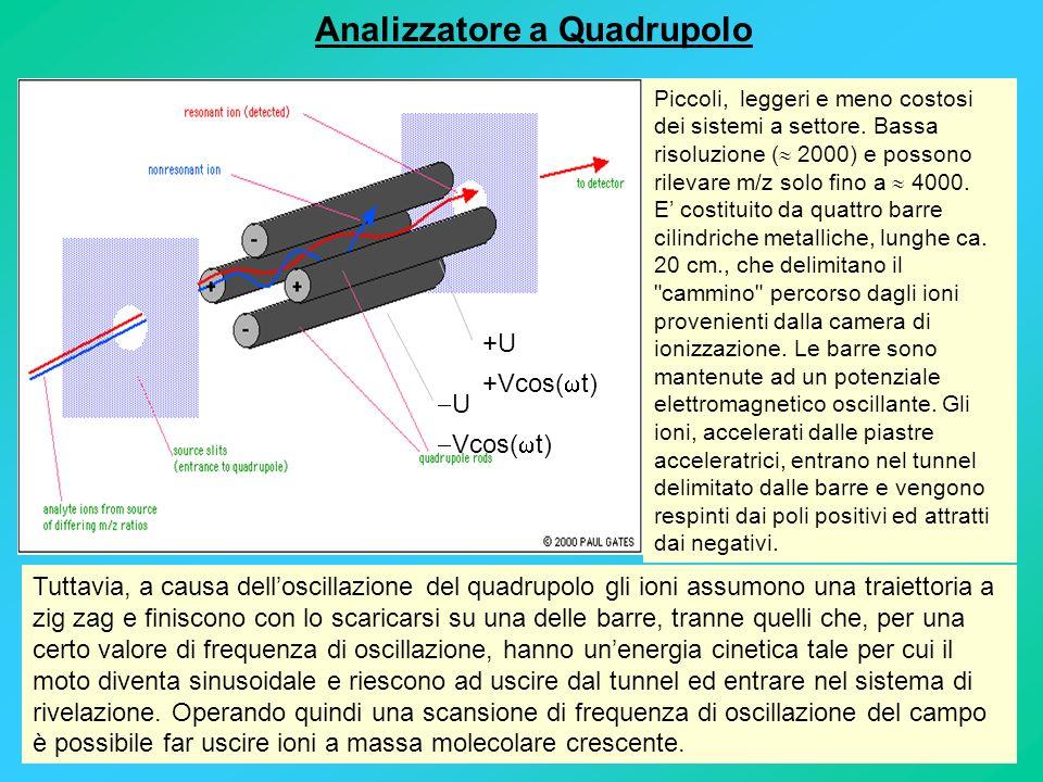 Analizzatore a Quadrupolo +U +Vcos( t) U Vcos( t) Piccoli, leggeri e meno costosi dei sistemi a settore. Bassa risoluzione ( 2000) e possono rilevare