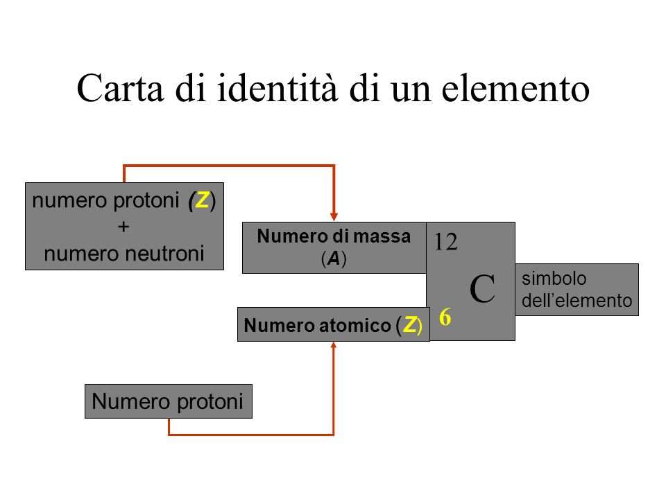 Carta di identità di un elemento 6 C 12 simbolo dellelemento Numero di massa (A) numero protoni (Z) + numero neutroni Numero atomico (Z ) Numero protoni