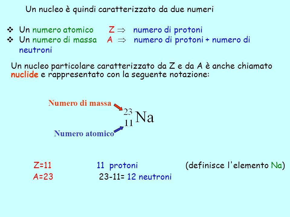Un numero atomico Z numero di protoni Un numero di massa A numero di protoni + numero di neutroni Z=11 11 protoni (definisce l'elemento Na) A=23 23-11