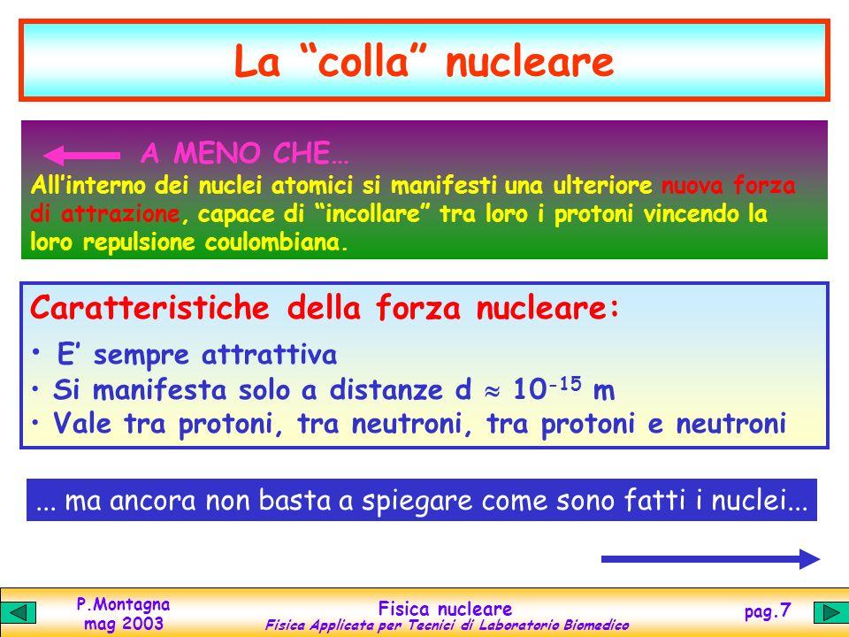 P.Montagna mag 2003 Fisica nucleare Fisica Applicata per Tecnici di Laboratorio Biomedico pag.6 Nel nucleo ci sono Z protoni molto vicini tra loro (d