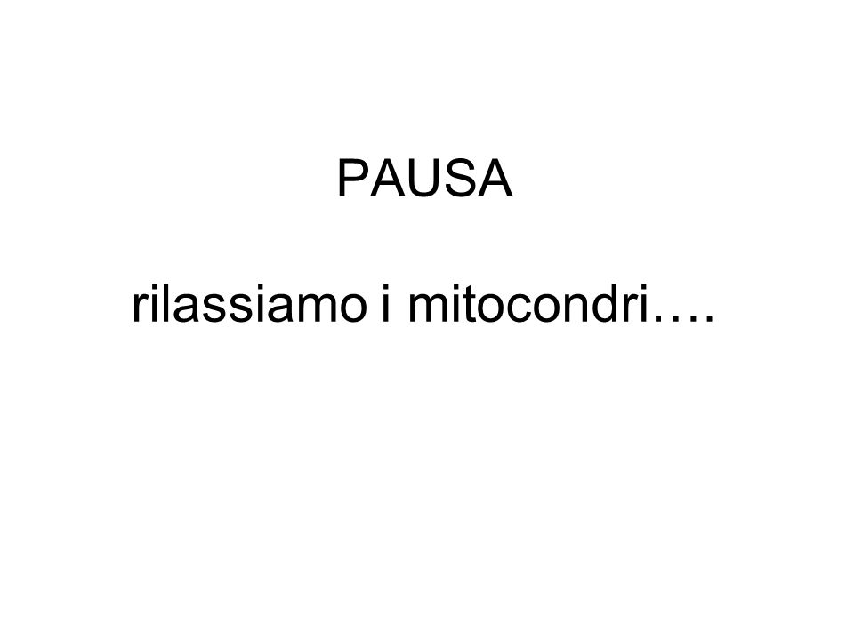PAUSA rilassiamo i mitocondri….