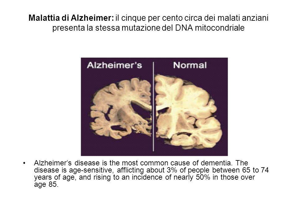 Malattia di Alzheimer: il cinque per cento circa dei malati anziani presenta la stessa mutazione del DNA mitocondriale Alzheimers disease is the most