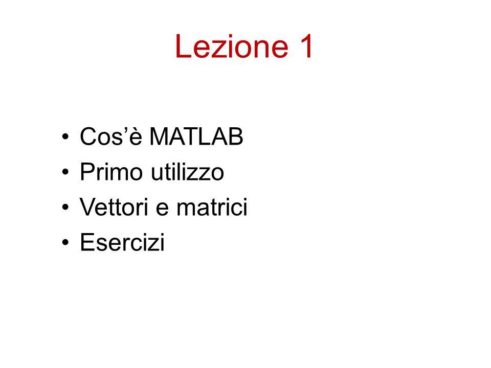 Lezione 1 Cosè MATLAB Primo utilizzo Vettori e matrici Esercizi