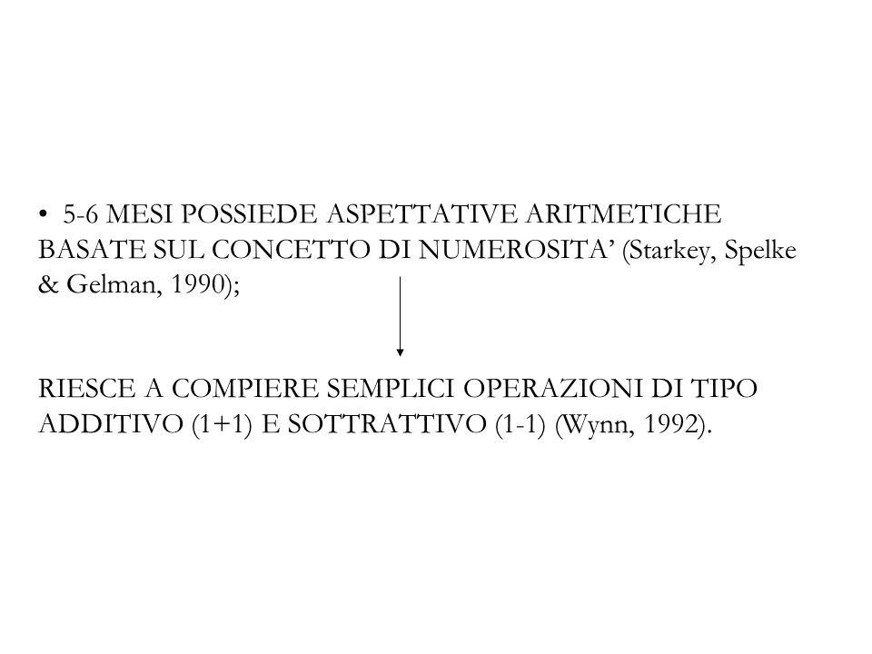 5-6 MESI POSSIEDE ASPETTATIVE ARITMETICHE BASATE SUL CONCETTO DI NUMEROSITA (Starkey, Spelke & Gelman, 1990); RIESCE A COMPIERE SEMPLICI OPERAZIONI DI