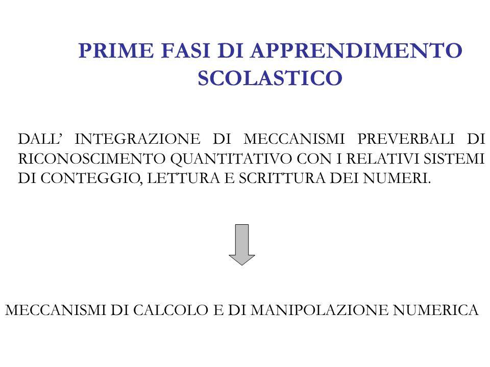 I TRE MECCANISMI BASE DELLINTELLIGENZA NUMERICA Meccanismi Semantici (regolano la comprensione della quantità) (3 = ) Meccanismi Lessicali (regolano il nome del numero) (1 – 11) Meccanismi Sintattici (Grammatica Interna = Valore Posizionale delle Cifre) (25= 2 decine e 5 unità )