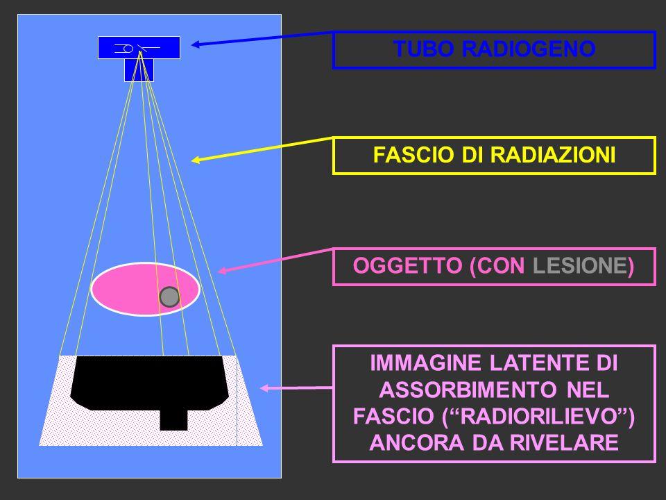 IMMAGINE LATENTE DI ASSORBIMENTO NEL FASCIO (RADIORILIEVO) ANCORA DA RIVELARE OGGETTO (CON LESIONE) TUBO RADIOGENO FASCIO DI RADIAZIONI