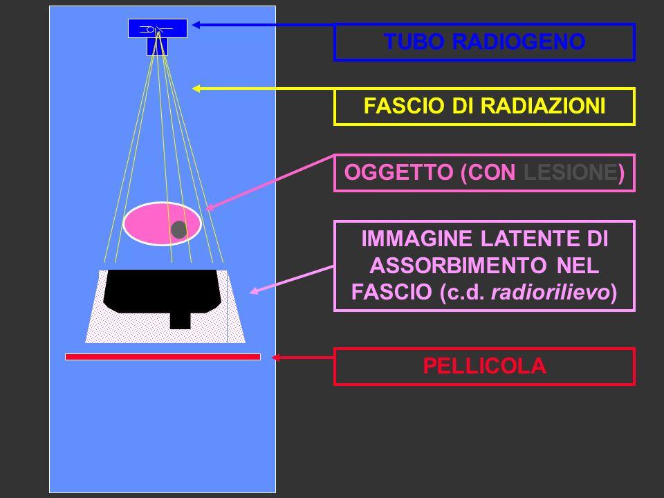 IMMAGINE LATENTE DI ASSORBIMENTO NEL FASCIO (c.d. radiorilievo) PELLICOLA OGGETTO (CON LESIONE) TUBO RADIOGENO FASCIO DI RADIAZIONI