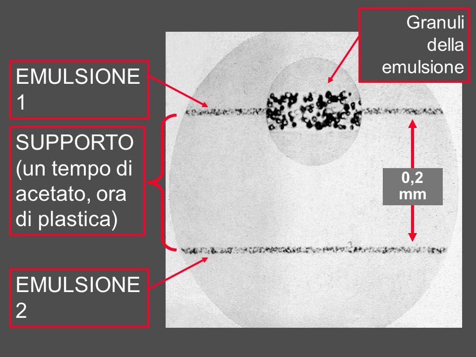 SUPPORTO (un tempo di acetato, ora di plastica) EMULSIONE 1 EMULSIONE 2 Granuli della emulsione 0,2 mm