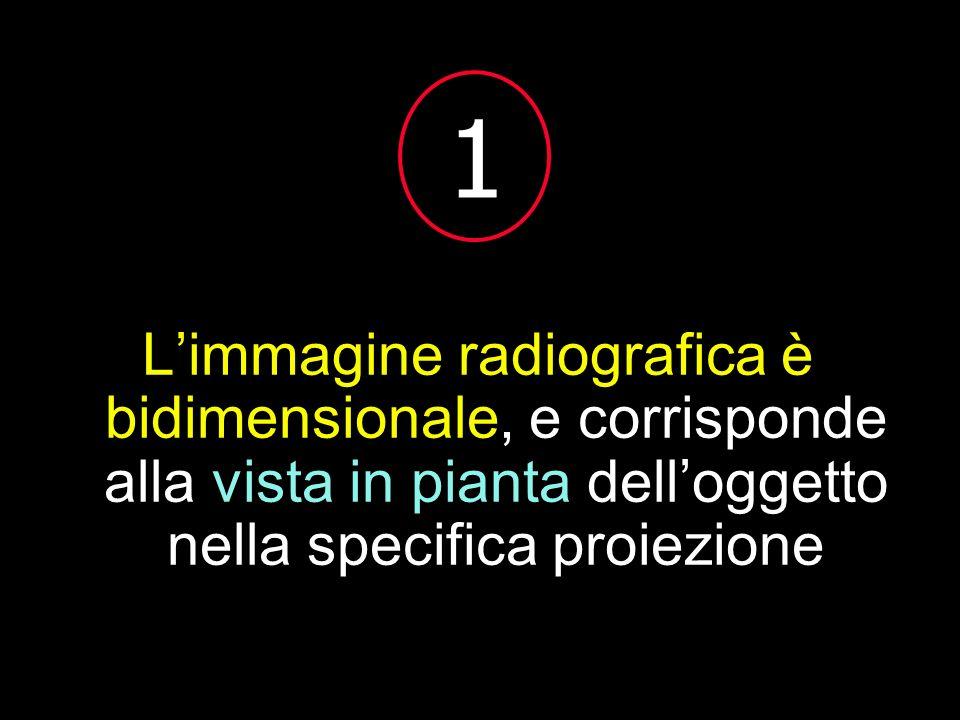 Limmagine radiografica è bidimensionale, e corrisponde alla vista in pianta delloggetto nella specifica proiezione 1