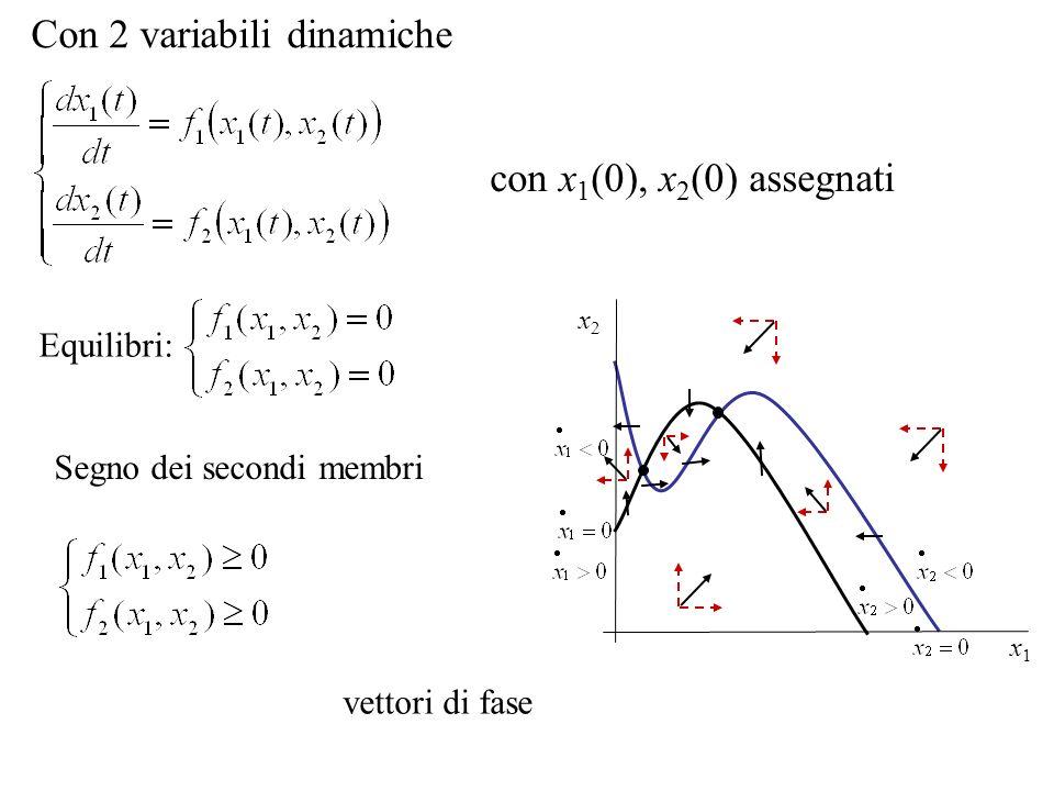con x 1 (0), x 2 (0) assegnati Con 2 variabili dinamiche Equilibri: Segno dei secondi membri vettori di fase x1x1 x2x2
