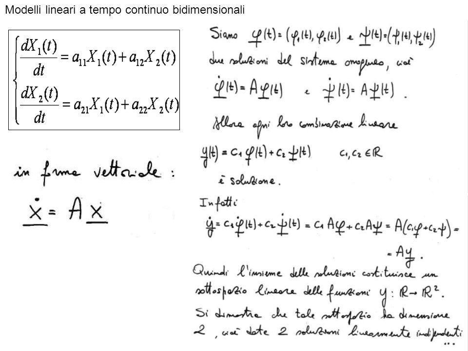 Modelli lineari a tempo continuo bidimensionali