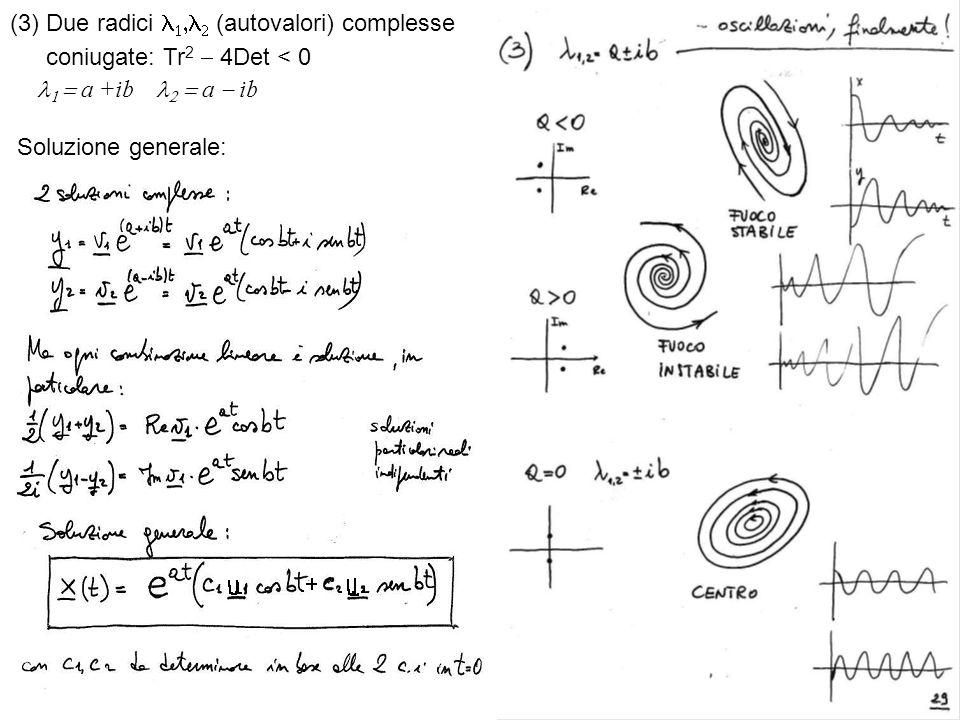 (3) Due radici (autovalori) complesse coniugate: Tr 2 4Det < 0 a +ib a ib Soluzione generale: