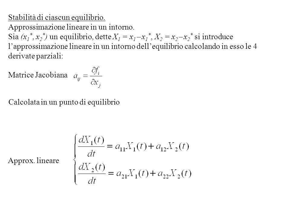 Stabilità di ciascun equilibrio. Approssimazione lineare in un intorno. Sia (x 1 *, x 2 * ) un equilibrio, dette X 1 = x 1 x 1 *, X 2 = x 2 x 2 * si i