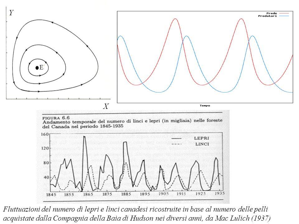 Crescita logistica della preda r x 1 sx 1 2 x 1 x 2 = x 1 (r sx 1 bx 2 ) m x 2 + c x 1 x 2 = x 2 ( m+cx 1 ) Prede x 1 Predatori x 2