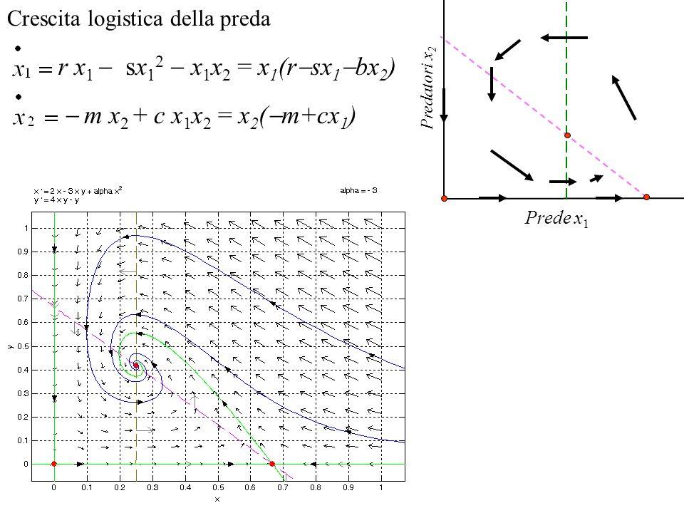 Stabilità di ciascun equilibrio.Approssimazione lineare in un intorno.
