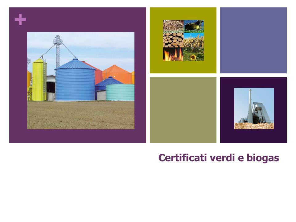+ Certificati verdi Che cosa sono: Titoli di credito assegnati dal GSE (Gestore del Sistema Elettrico) alle aziende, comprese quelle agricole che producono energia elettrica da fonti rinnovabili.