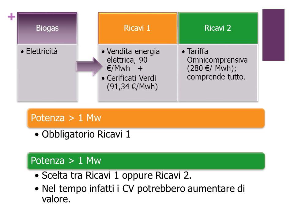 + Potenza > 1 Mw Obbligatorio Ricavi 1 Potenza > 1 Mw Scelta tra Ricavi 1 oppure Ricavi 2. Nel tempo infatti i CV potrebbero aumentare di valore.