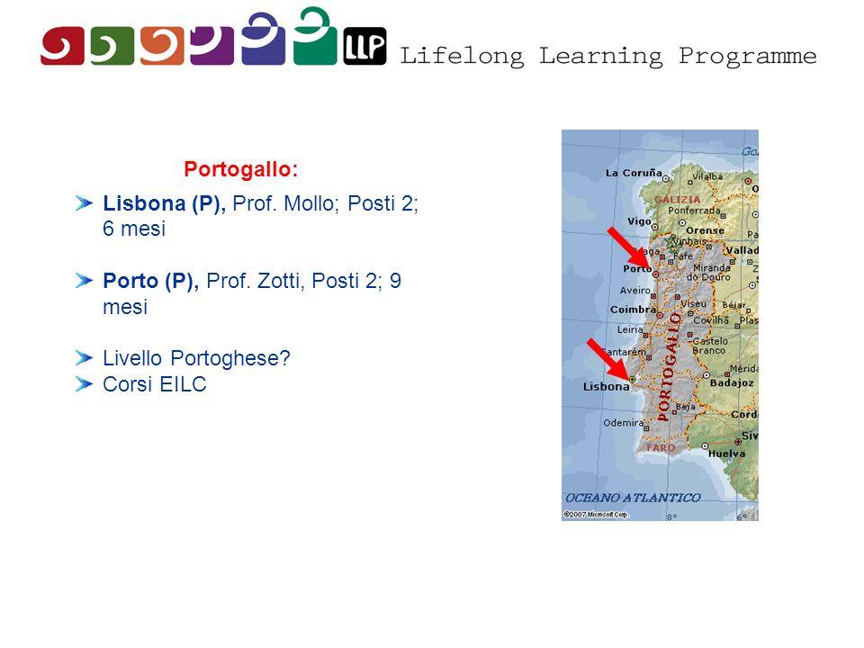 Portogallo: Lisbona (P), Prof. Mollo; Posti 2; 6 mesi Porto (P), Prof. Zotti, Posti 2; 9 mesi Livello Portoghese? Corsi EILC