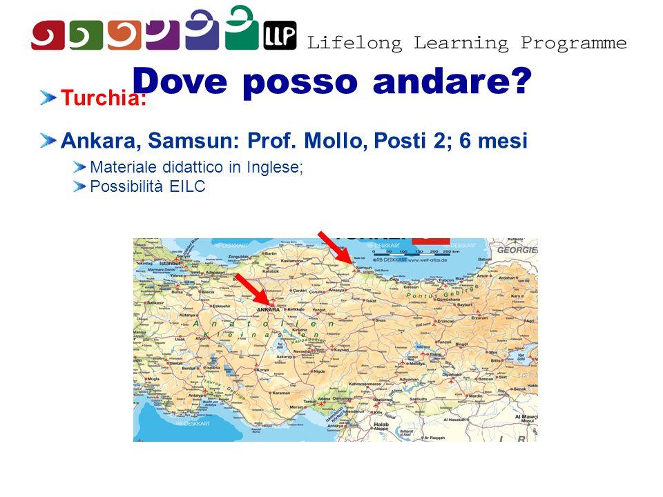 Dove posso andare? Turchia: Ankara, Samsun: Prof. Mollo, Posti 2; 6 mesi Materiale didattico in Inglese; Possibilità EILC