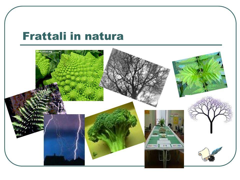 Frattali in natura