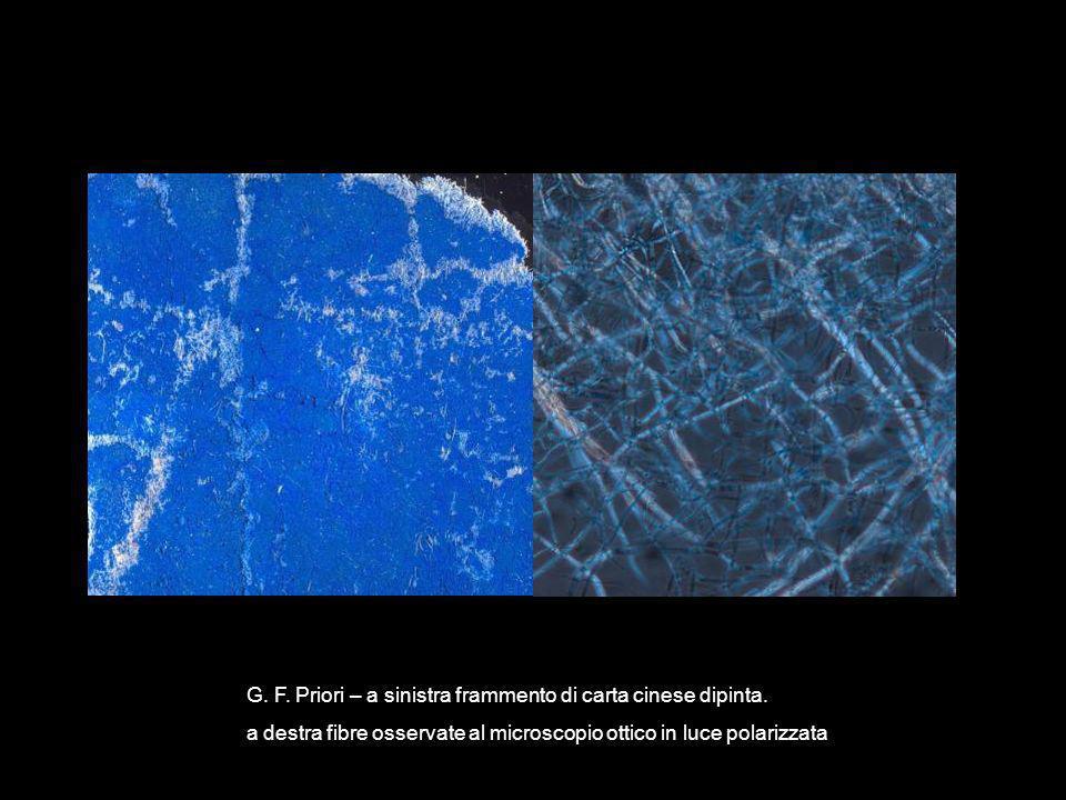G. F. Priori – a sinistra frammento di carta cinese dipinta. a destra fibre osservate al microscopio ottico in luce polarizzata
