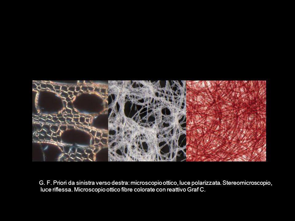 G. F. Priori da sinistra verso destra: microscopio ottico, luce polarizzata. Stereomicroscopio, luce riflessa. Microscopio ottico fibre colorate con r