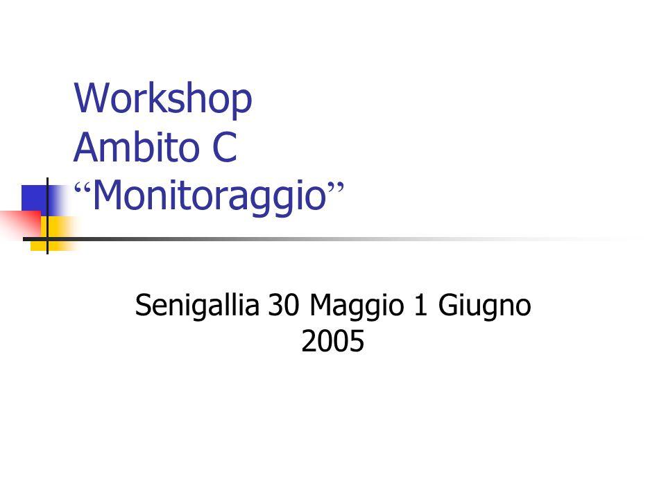 Workshop Ambito C Monitoraggio Senigallia 30 Maggio 1 Giugno 2005