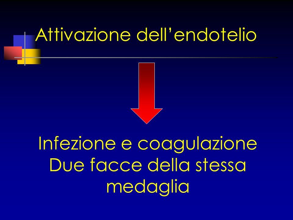 Attivazione dellendotelio Infezione e coagulazione Due facce della stessa medaglia