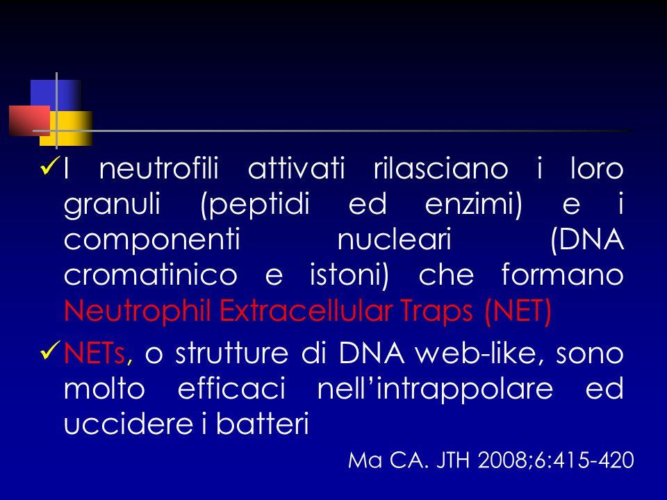 I neutrofili attivati rilasciano i loro granuli (peptidi ed enzimi) e i componenti nucleari (DNA cromatinico e istoni) che formano Neutrophil Extracel