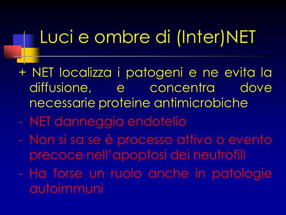 Luci e ombre di (Inter)NET + NET localizza i patogeni e ne evita la diffusione, e concentra dove necessarie proteine antimicrobiche -NET danneggia end