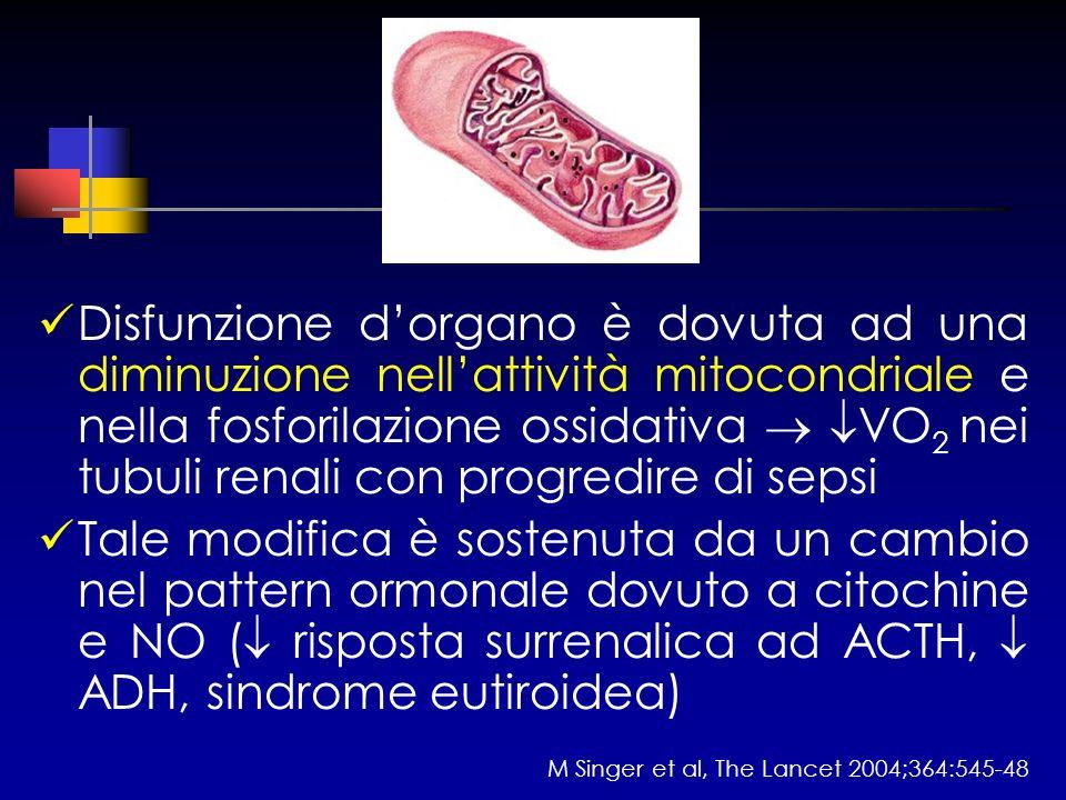 Disfunzione dorgano è dovuta ad una diminuzione nellattività mitocondriale e nella fosforilazione ossidativa VO 2 nei tubuli renali con progredire di
