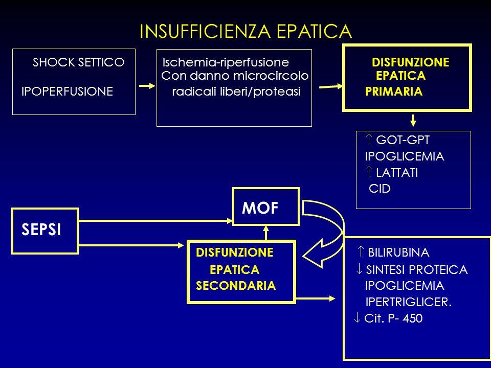INSUFFICIENZA EPATICA SHOCK SETTICO Ischemia-riperfusione DISFUNZIONE Con danno microcircolo EPATICA IPOPERFUSIONE radicali liberi/proteasi PRIMARIA G