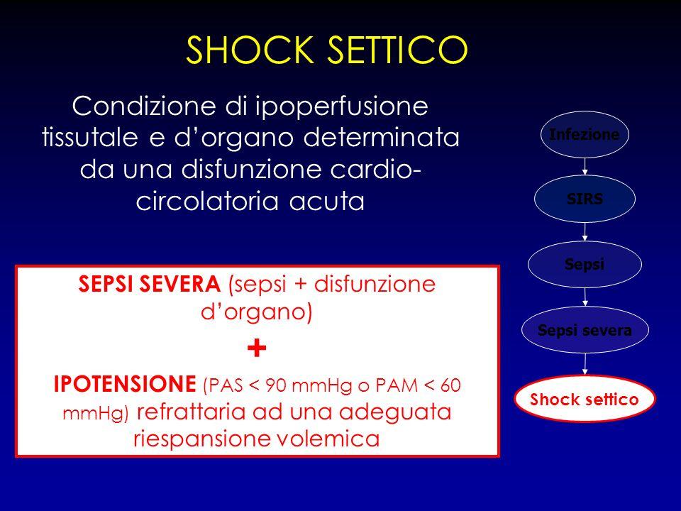 SHOCK SETTICO Infezione SIRS Sepsi Sepsi severa Shock settico Condizione di ipoperfusione tissutale e dorgano determinata da una disfunzione cardio- c