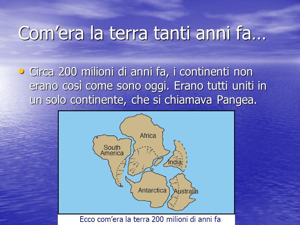 Comera la terra tanti anni fa… Circa 200 milioni di anni fa, i continenti non erano così come sono oggi.