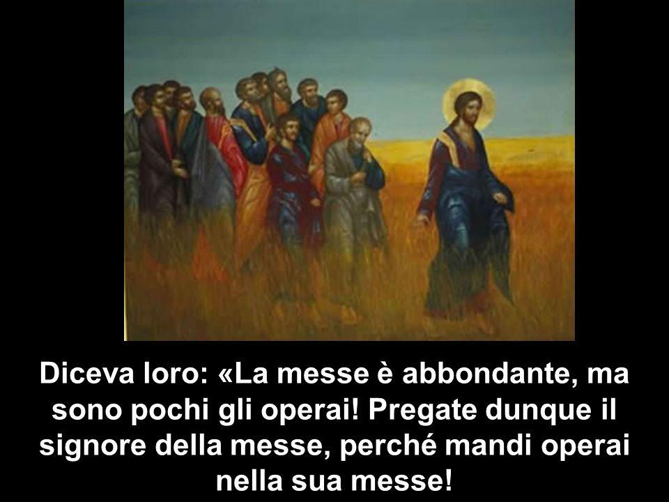 Diceva loro: «La messe è abbondante, ma sono pochi gli operai! Pregate dunque il signore della messe, perché mandi operai nella sua messe!