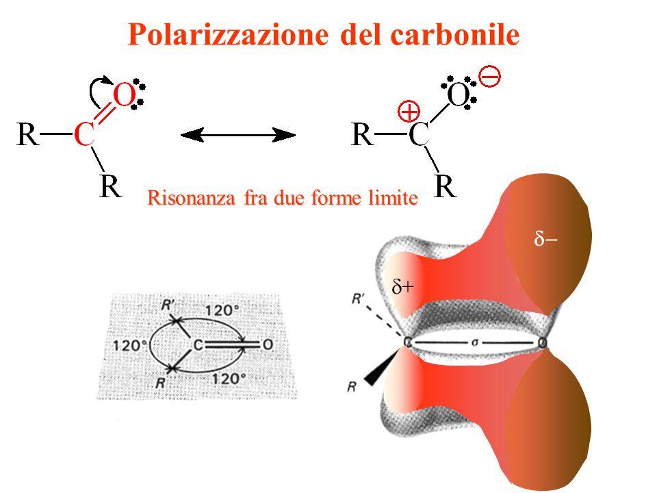 Polarizzazione del carbonile + Risonanza fra due forme limite
